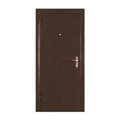Металлическая дверь МАСТЕР